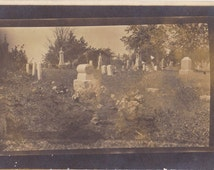 Here Lies Eve- 1910s Antique Photograph- Cemetery- Found Photo- Graveyard- Tombstones- Headstones- Real Photo Postcard- RPPC- Paper Ephemera