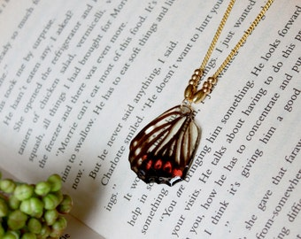 Resin / necklace / butterfly wing / Insect Jewelry, Cool Jewelry, fairy garden, Resin Necklace, Cute Necklace, resin jewelry, Gift for her