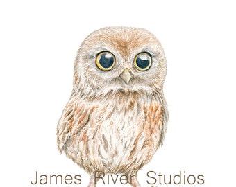 Owl Art Owl Painting Owl Print Baby Owl Watercolor Baby Bird Painting Baby Owl Nursery Art Children Art Forest Animal Woodland Creature Art