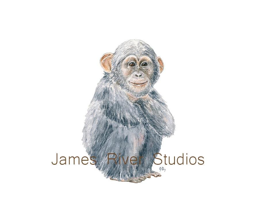 Best Chimp Painting