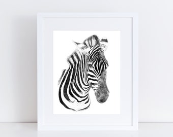 Zebra Illustration Print, Graphite Pencil Realistic Drawing Of Safari Animal Africa Black and White Stripes