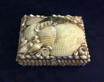 Collectable Hand Made Shell Box