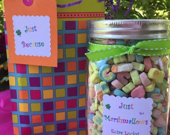 Lucky Charms® Marshmallows | Best Selling Item | Gift Wrapped | Pints, Quarts, Half Gallons | Marshmallows Only