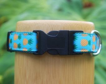 "Dog Collar ""Lazy Pineapples""  Turquoise - Small Dog Collar, Medium Dog Collar, FREE SHIPPING, Adjustable"