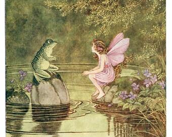 Frog and Fairy - Clip Art - Digital Download  - Hi Res Jpeg - 300DPI