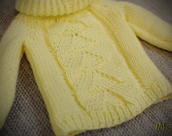 Sweater for Doll BJD - SD