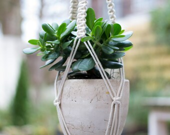 Macrame Plant Hanger / Plant Holder / Hanging Planter / Home Decor / Macrame Plant Holder / pot hanger / garden decor