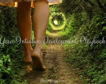 Intuitive Development Playbook