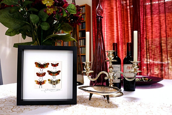 Artframe with real insects : Topquality framed insects with beautiful mosaic with lantern bugs FREE SHIPPING