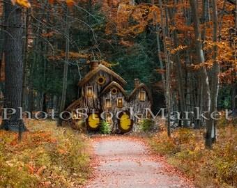 Fairy House - Woodland Scene -  Gnome House  -  Fantasy backdrop - Forest background -  Fantasy house background - Photoshop - Newborn