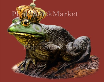 Frog Prince, Bull Frog Png, Png File, Frog in Crown, Photoshop overlay, Frog PNG, Fantasy Art PNG, Photo manipulation, Composite Cut out