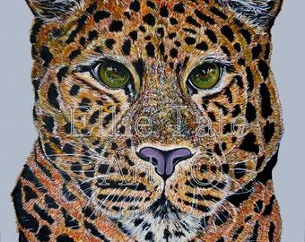 A4 Limited Edition Print - Amur Leopard