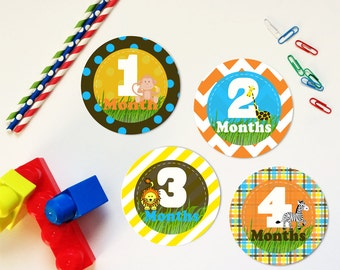 Safari Animals Monthly Milestone Stickers or Iron On Transfers, Orange Yellow Blue Brown Safari Animals Onesie Stickers
