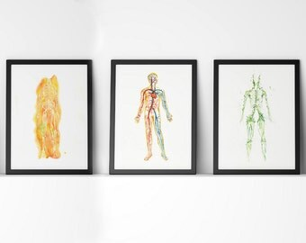 Body Systems 5-Piece Watercolor Print Set - Anatomy Art Set - Muscular, Nervous, Circulatory, Lymphatic and Skeletal System Art Print Set