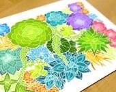 Colorful succulent print - succulent art print - plant illustration cactus - garden gardening nature - succulent drawing
