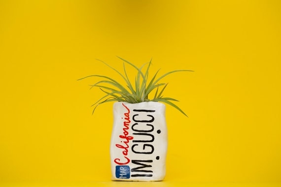 IMGUCCI / LICENSE PLATE planter