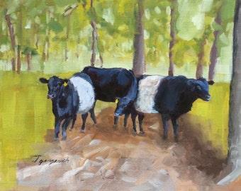 Amusing cows