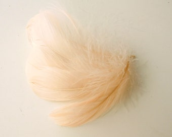 20 pcs Peach Feathers for crafts, salmon bridal feathers, pastel natural craft feathers. UK Seller