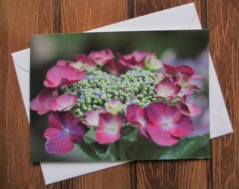 Flower Greetings card C5 Hydrangea