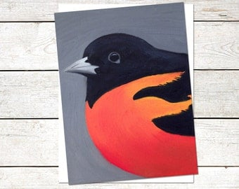 Baltimore Oriole Note Cards, 4.5 x 6, Original Oil Painting, Bird Note Cards, orange and black note cards, animal cards