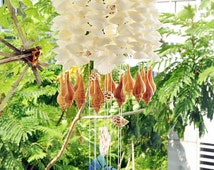 Seashell Wind chimes, White shells and brown conch, Boho beach wind chimes