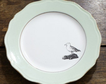 A gull on a green plate