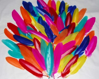 Quill Craft Feathers - Choice of Colours & Quantities - Card Making - Scrapbooking