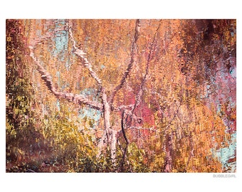 Landscape Photography PRINT, Reflections of Autumn, Wall Art