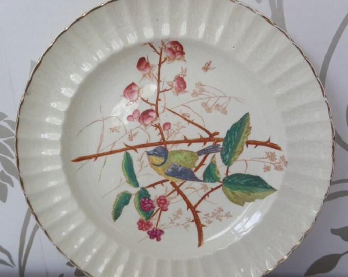 "Porcelain Plate Victorian (1887) Edwin J Bodley 10.5"" Hand Painted Blue Tit Blackberry"