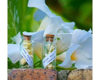 Gratitude Message In A Bottle Pocket Full Of Sunshine Dreamcatcher  Personalised Gift Mini Cork Bottle Floral Yellow Flowers YellowFlowers