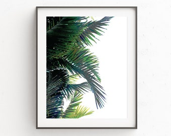 Palm Leaf | Palm Leaf Print | Digital Prints | Wall Art | Palm Print | Botanical Artwork | Palm Tree Print | Palm Tree Art | Poster