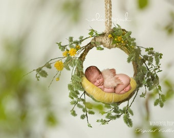 Green and Yellow Nest - Digital Backdrop - Photo Prop for Newborn Photography