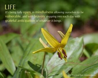 Live More Abundantly - landscape