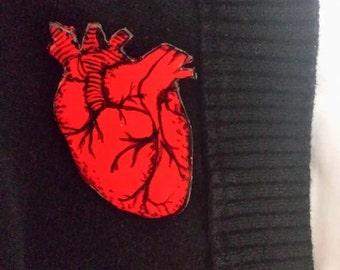 Anatomically Correct Heart Pin