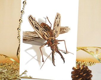 Beetle, Insect, Macrodontia, Cervicornis, Art, Card, Greeting Card, Wildlife, Animal, Watercolor