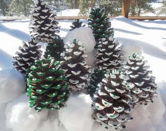 Winter Fun Pine Cones (Set of 6)