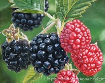 """ORIGINAL Oil Painting, """"Blackberries"""", Hand Painted berries, Art on Canvas"""