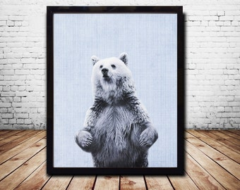 Posters Wall Art Print Bear Print Animal Print Bear Art