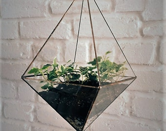 Hanging glass terrarium. Space saving. Octahedron. Geometric. Hanging garden. Gift for Her. Air plant. Stained glass.