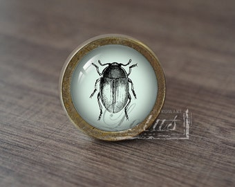 Insect—Handmade Vintage Antique Drawer Knobs Pulls Handles/Dresser Knobs Cabinet Pull handles / Furniture Hardware
