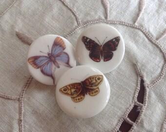 3 Butterfly English China Buttons. Birchcroft. English China.