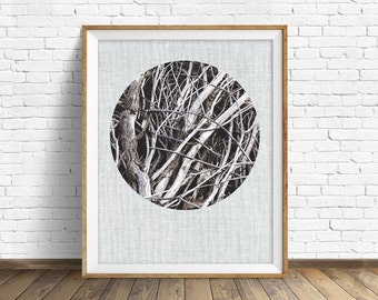 "nature photography, large art, large wall art, instant download, printable art, art print, farmhouse, decor, wall art, gray, black -""Tangle"""