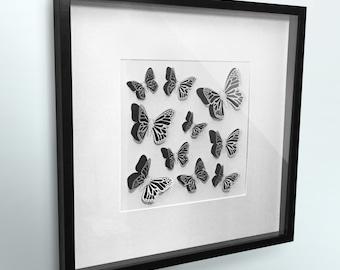 3D Butterfly wall art framed | Laser cut butterflies | Deep box frame |  Laser cut butterfly | Wall Butterflies | Wall Art Decor | Card