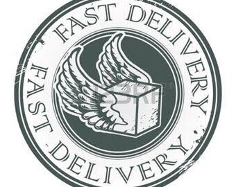 Fast delivery Upgrade 2-6 days with tracking number