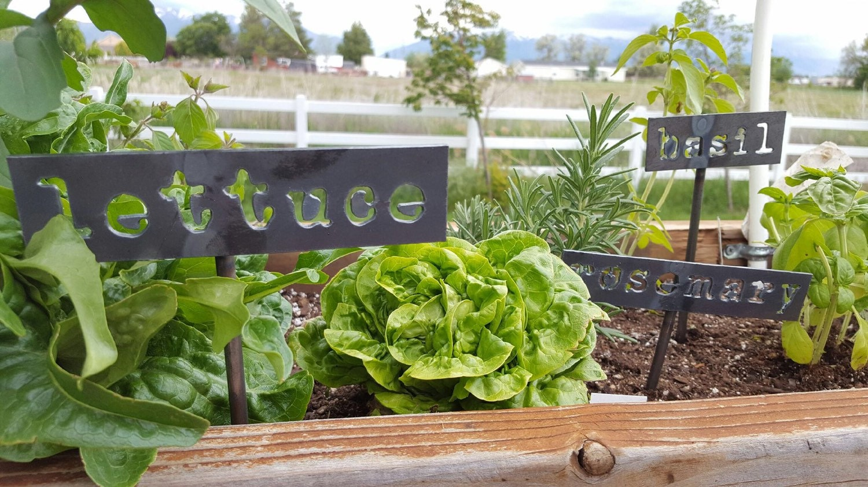 Garden Planter Vegetable Steel Signs With Welded Post Plasma
