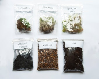 Big Moss Terrarium Kit / Silver Moss / Cushion Moss / Sphagnum Moss / Soil Mix / Activated Charcoal / Horticultural Grit by Geodesium