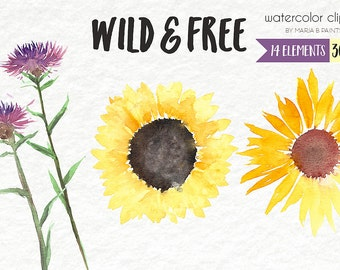 Watercolor Clip Art - Wild flowers-Perosnal Use- Instant Download- Sunflowers- Dandelions- Weeds- Pretty- Flowers- Spring- Fillers-Sun