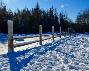 FIne Art Fence Photography, Winter, Rustic, Outdoors, Horse Fence