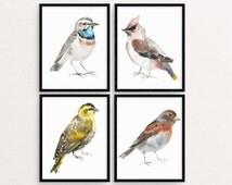 Watercolor Bird Painting, Bird Painting Set, Bird Print, Bird Wall Art, Bird Printable, Birds Nursery Decor, Bird Print Set, Bird Artwork