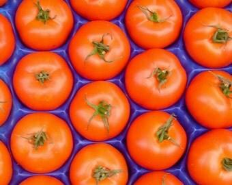 Tomatoes 5x7 Photograph